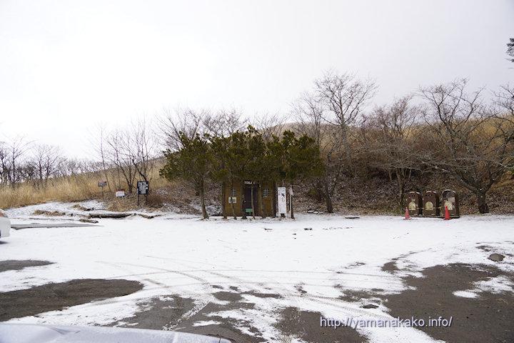 雪が降って白くなりました