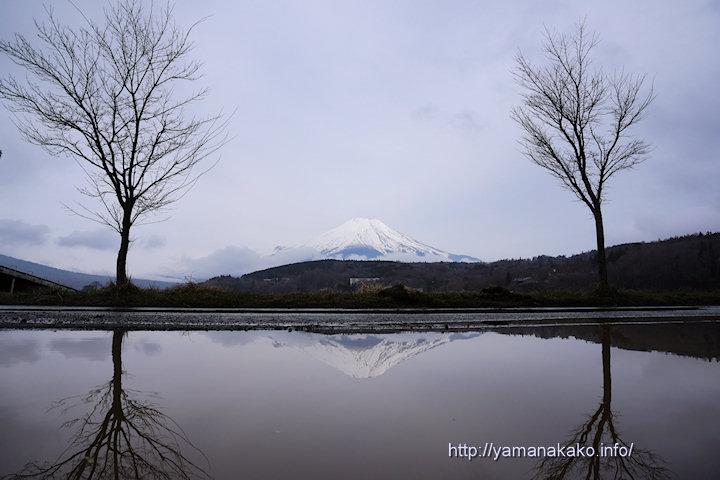 曇り空だけど逆さ富士
