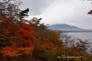紅葉とちょっぴり富士山