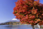 平野湖畔の紅葉