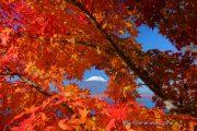 紅葉の額に入った富士山