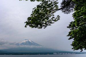 曇り空の下、富士山