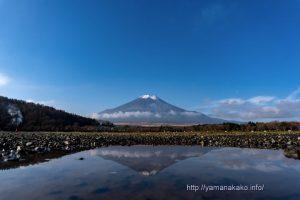 水たまりに映る逆さ富士