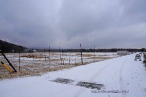 雪の積もった道路