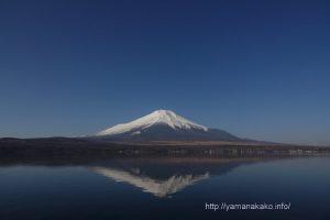 春っぽい富士山