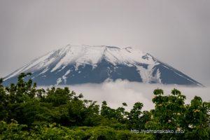 富士山頂は雪化粧