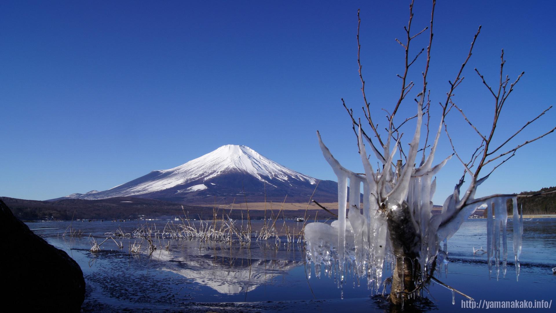 2011年の富士山(壁紙用 ...