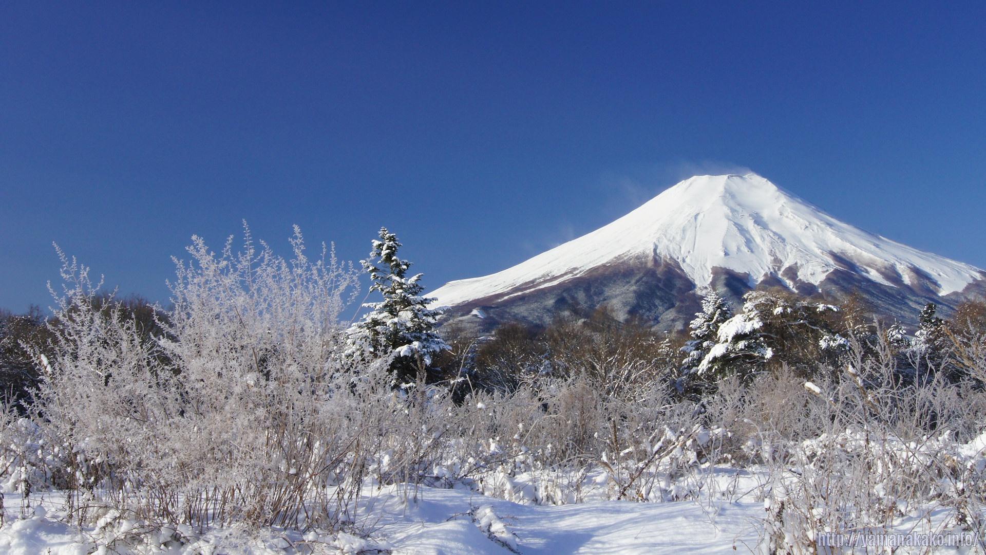 2011年の富士山 壁紙用 山中湖観光情報
